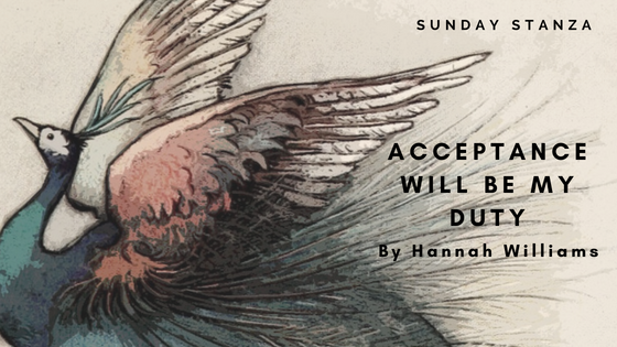 Sunday Stanza: Poem Thirty Three- Acceptance Will Be My Duty By Hannah Williams