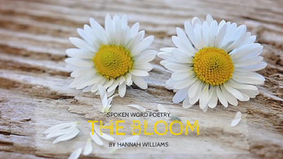 Spoken Word Poetry #1: The Bloom by Hannah Williams