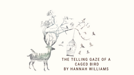 Prose/Short Story: The Telling Gaze Of A Caged Bird