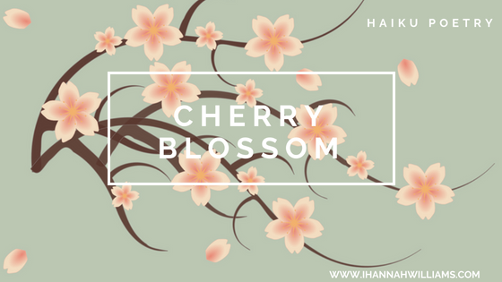 Haiku Poetry: Cherry Blossom