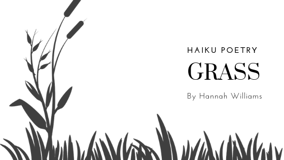 Haiku Poetry: Grass
