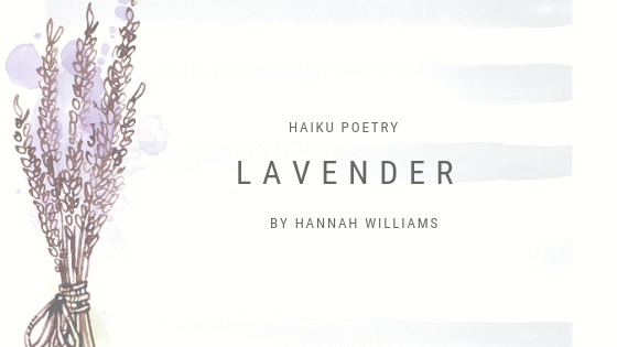 Haiku Poetry: Lavender