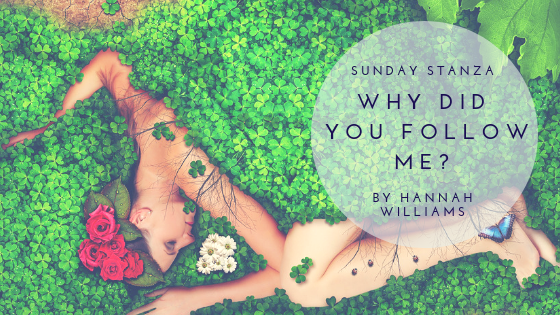 Sunday Stanza: Poem Forty Eight- Why Did You Follow Me?