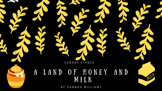 Sunday Stanza: Poem Fifty Four: A Land of Honey and Milk by Hannah Williams