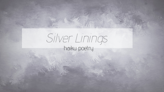 Haiku Poetry: SilverLining