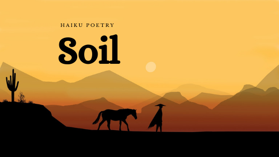 Haiku Poetry: Soil